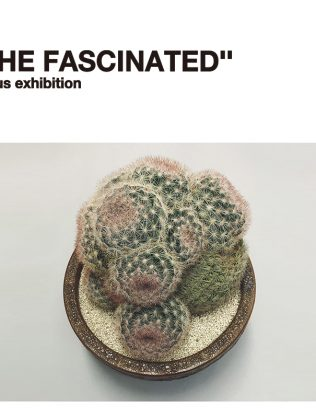 "about ""FASCINATED"""